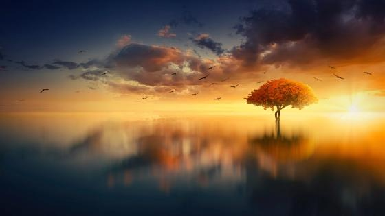 Scenic sunset fantasy landscape wallpaper