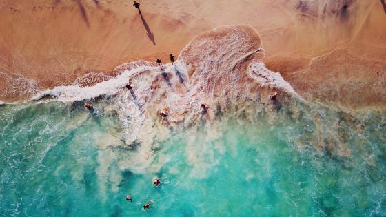 People on the beach - Aerial view wallpaper