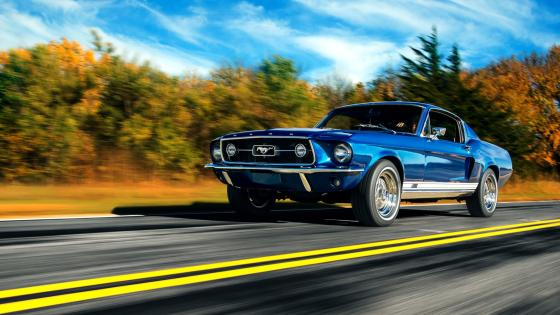 Ford Mustang Boss 429 wallpaper