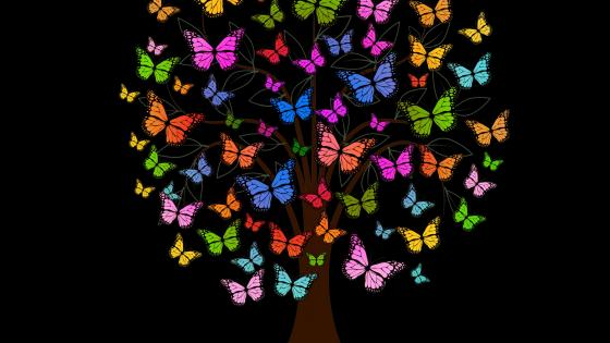 Colorful butterfly tree wallpaper