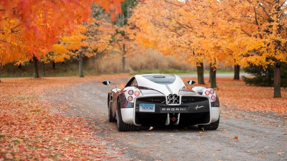 Pagani Huayra in the fall forest wallpaper