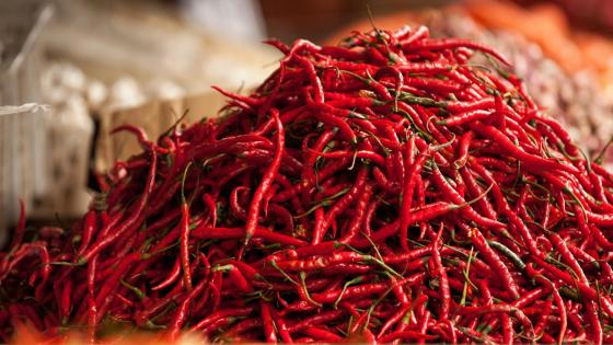 Hot peppers wallpaper