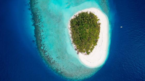 Maldive Islands Drone view wallpaper
