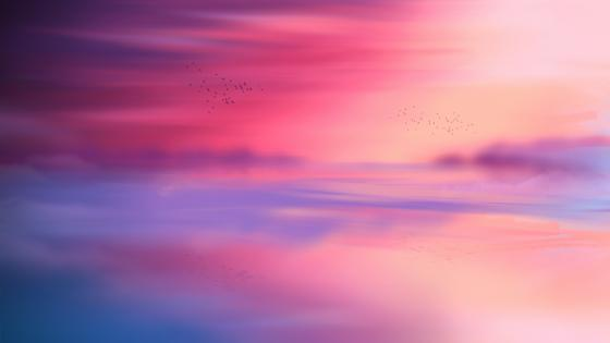 Pink sunset wallpaper