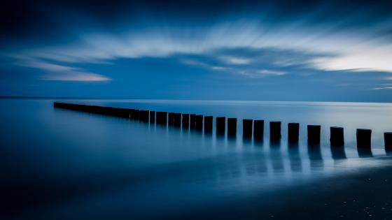 Evening in blue wallpaper