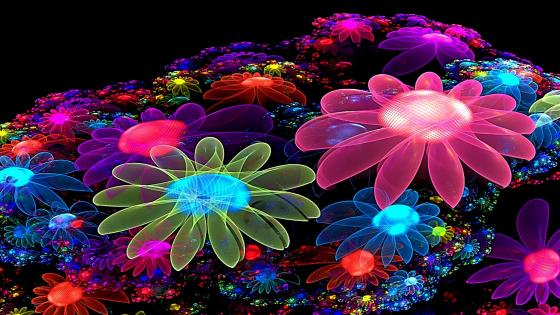 Glowing flowers wallpaper