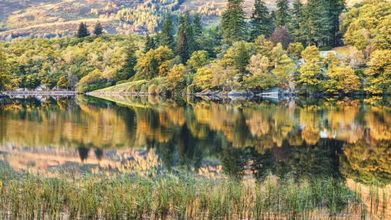 8K Autumn landscape reflection wallpaper