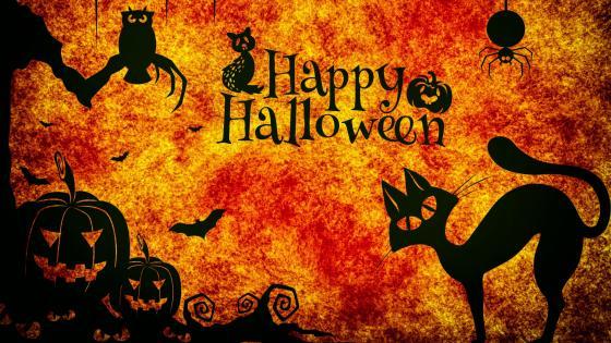 Halloween graphics wallpaper