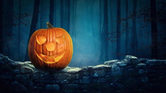 Jack O'lantern in the dark forest wallpaper
