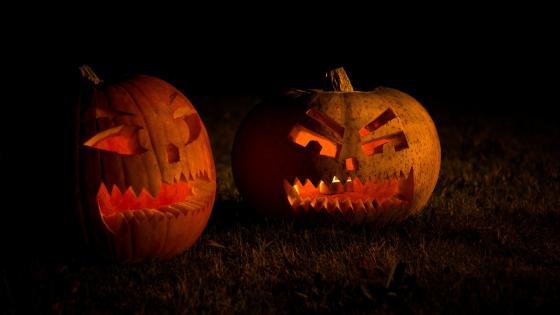 Pumpkin lanterns wallpaper