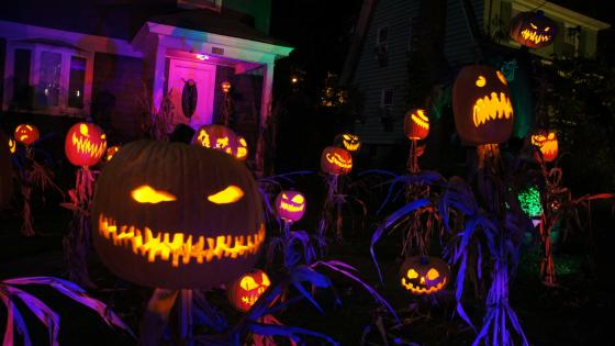 Spooky Jack O'lanterns in the garden wallpaper