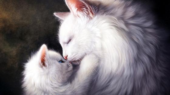 White Cats Painting Art wallpaper