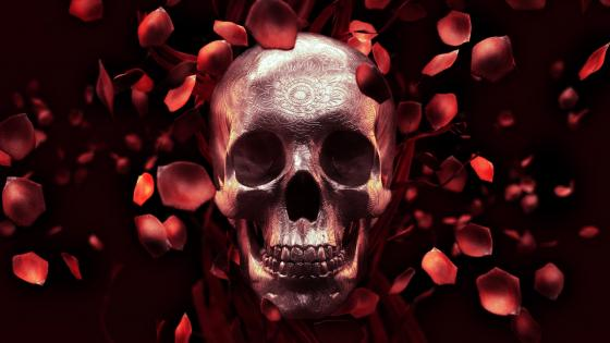 Skull with red rose petals wallpaper