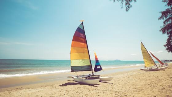 Colorful sailboats wallpaper