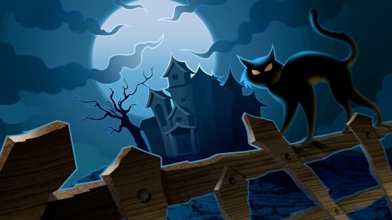 Black cat walks on a fence - Halloween art wallpaper