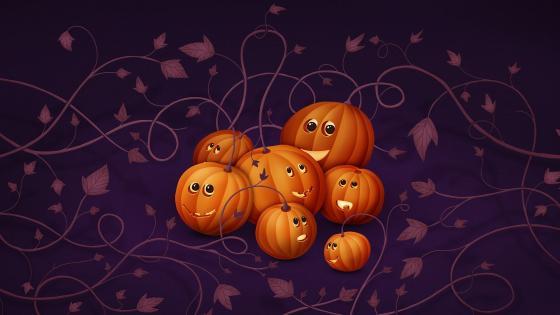 Cute pumpkins wallpaper