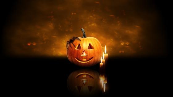 Spider on a pumpkin Jack O'lantern wallpaper