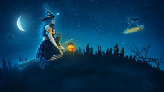 Young witch on a broomstick on Halloween night wallpaper