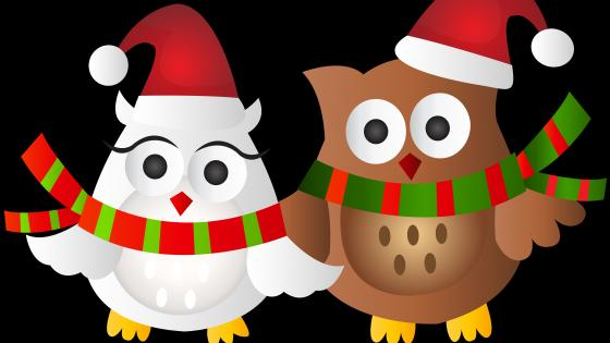 Christmas owls wallpaper