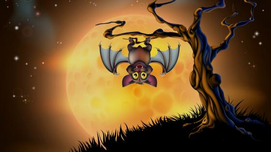 Vampire bat wallpaper