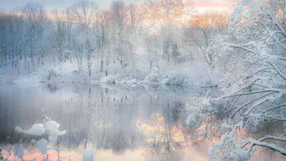 Snowy winter landscape reflection wallpaper