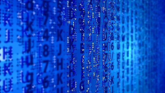 Digital data wallpaper