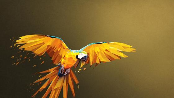 Macaw Low Poly Digital Art wallpaper
