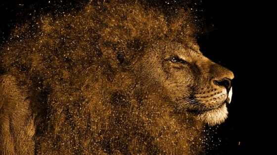 Lion art wallpaper