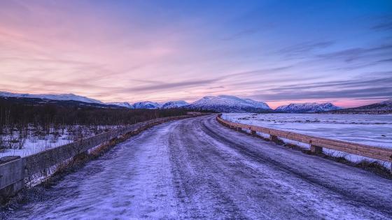 Endless winter road wallpaper