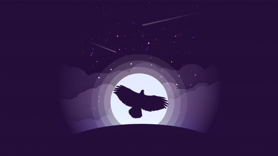 Eagle minimal art wallpaper