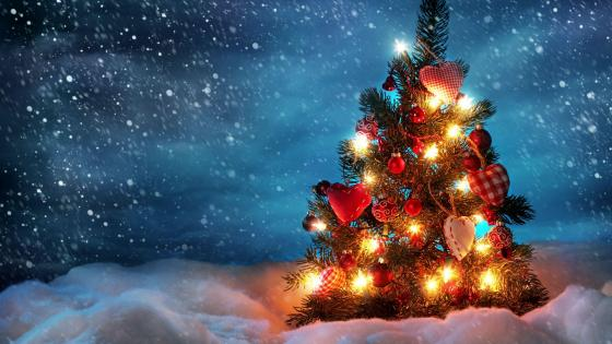 Christmas tree in the night snowfall wallpaper