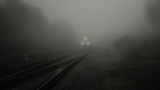 Train appears in Fog wallpaper
