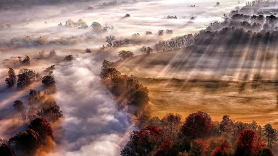 Rays of sun with fog in countryside wallpaper