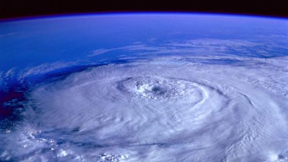 Hurricane Michael wallpaper