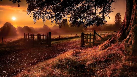 Countryside landscape at sunset wallpaper