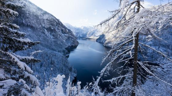 Königssee Lake in wintertime wallpaper