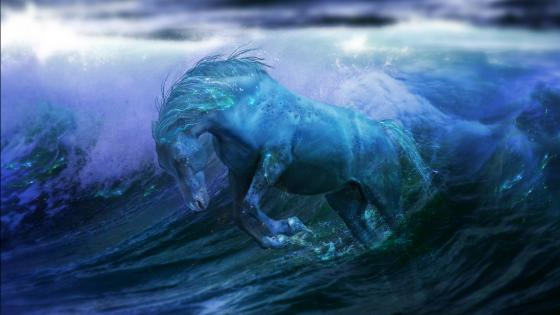 Sea horse - Fantasy art wallpaper