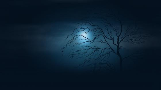 A lone tree in the moonlight wallpaper