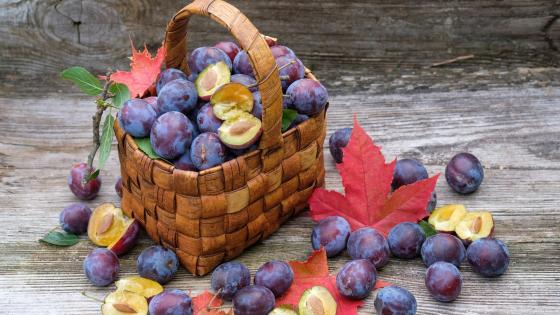 Basket of plum wallpaper