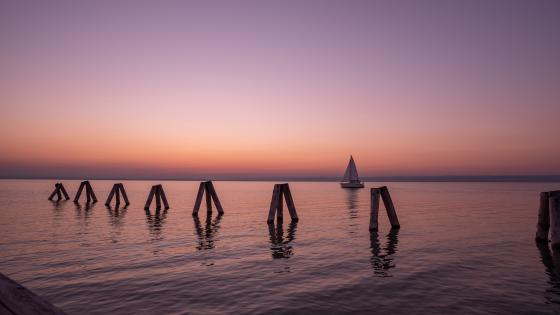 Lake Neusiedl wallpaper