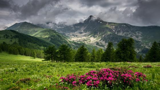 Rain clouds above the mountains wallpaper