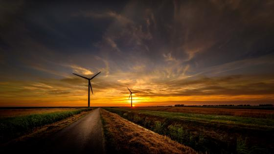Wind turbines in the sunrise wallpaper