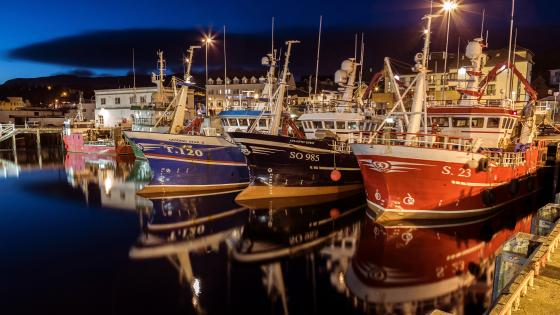 Ships in the Killybegs Harbour at night wallpaper
