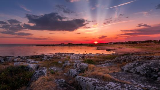 Pink sunset from the shore wallpaper