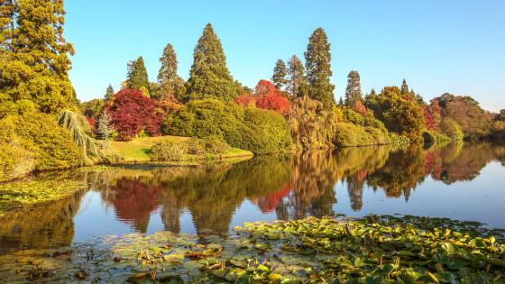 Sheffield Park and Garden (England) wallpaper