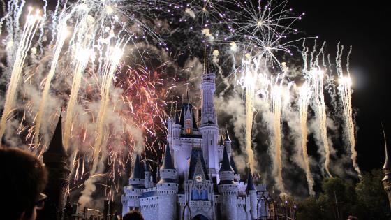Fireworks Behind the Magic Kingdom (Fantasyland) wallpaper