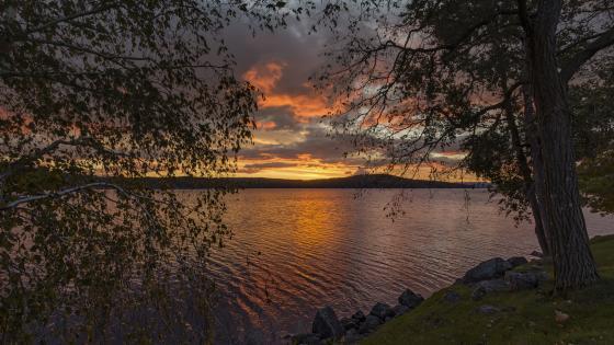 Meredith Bay at sunset wallpaper