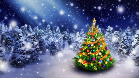 Christmas tree  in the snowfall wallpaper