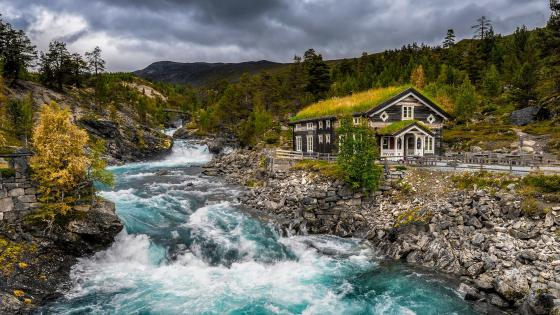 Turf house in Norway wallpaper