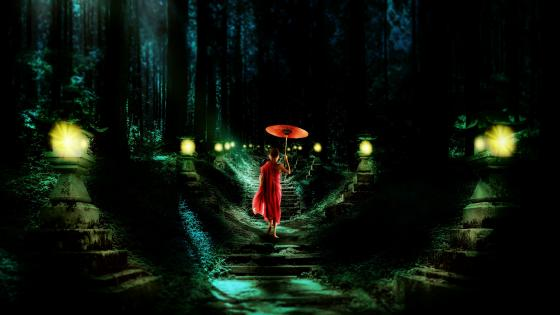 Young buddhist monk in the night forest wallpaper